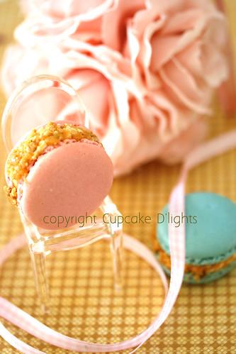 hazelnut praline macarons by {zalita}