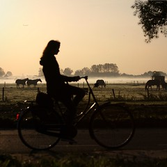 An early biker (Iam Marjon Bleeker) Tags: trees horses holland haarlem bike bicycle morninglight early biker daybreak 111111 vergierdeweg vroeg122