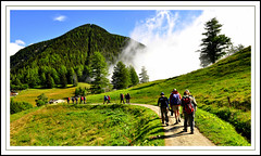 Monte Branco (Martins_JMR) Tags: montblanc trient randonne champex