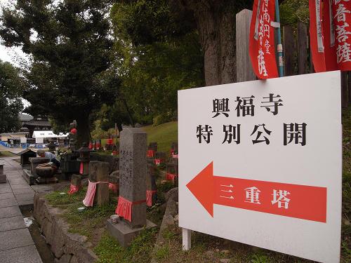 興福寺『三重塔』特別公開-01
