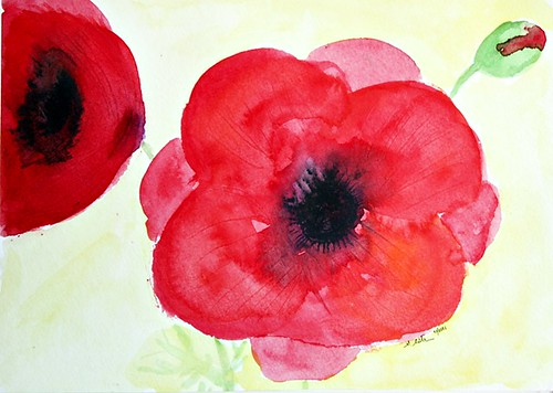 More Poppies.