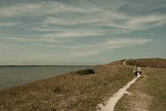 _MG_1565 (danieltreek) Tags: sun holiday holland beach nature water netherlands strand landscape see wasser sommer urlaub natur landschaft sonne nordsee niederlande northsee erholung