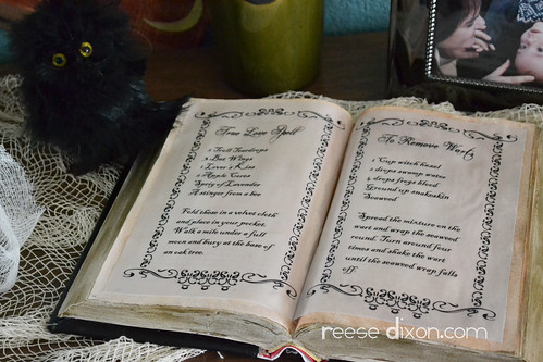 Witch's Spell Book