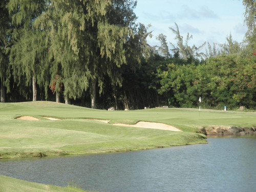 Turtle Bay Colf Course 344