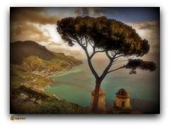 ~~ Ravello Italy ~~ Its a Dream ~~~Amo questo luogo (stephgum32807) Tags: italia mare kodachrome nikonf2 ravello ravelloitaly theperfectpicture hotelcarusoravello costadiamafi campaniait