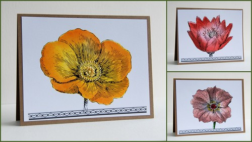 Collage of three flower cards without sentiment