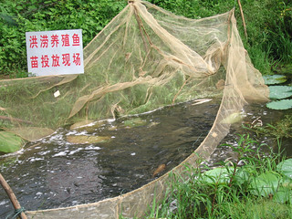 Aquaculture, China. Photo by Hong Meen Chee, 2007