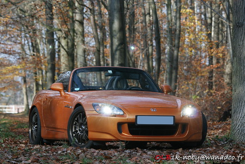 image - photo of orange Honda S2000 Roadster parked in autumn forest.