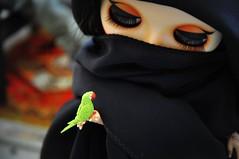 SCHEHERAZADE - شهرزاد