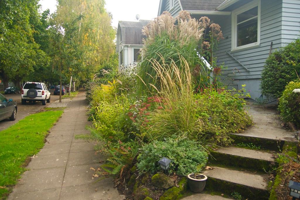 east garden  886