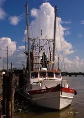 White Gold - Morgan City LA (Silva Image) Tags: seascape shrimpboats