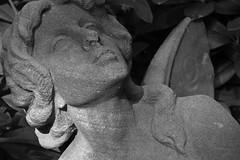Psyche (michael_hamburg69) Tags: sculpture friedhof cemetery female germany deutschland wings hamburg skulptur 1919 sandstein psyche ohlsdorf scultura butterflywings weiblich geflügelt schmetterlingsflügel grabmalfrerichs standortab35 seeledesmenschenwiegleichstdudemwasserschicksaldesmenschenwiegleichstdudemwind