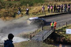 2011 Rally Wales GB Sweet Lamb (boddle (Steve Hart)) Tags: cars car wales truck 1 automobile sebastian sweet rally transport citroen wrc gb lamb trucks motorsports motorracing autosport ds3 rallygb loeb rallywales sweetlamb