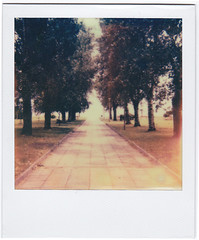 (Kristina) Tags: trees film grass polaroid path greece instant thessaloniki prespective impossibleproject px680