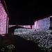 さがみ湖イルミリオン光の銀世界へ突入の写真