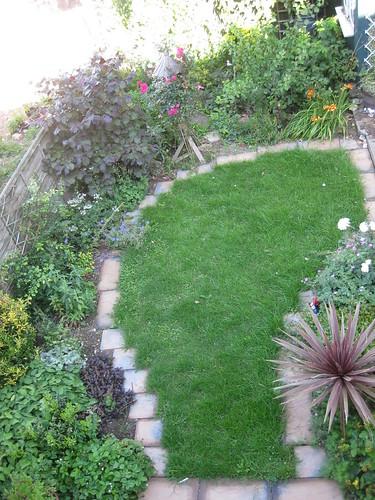 Upper lawn 1 July 2011