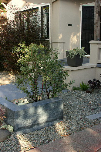 concrete, arctostaphylos and gravel
