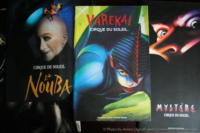 My Varekai Cirque du Soleil Performance-22.jpg