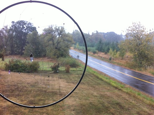 DreamCatcher overlooking the first full day of rain in Corvallis