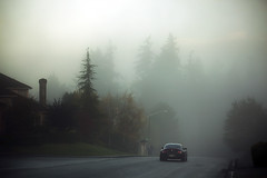 Debut de journee (sparth) Tags: road seattle morning trees car fog canon washington day foggy voiture l washingtonstate rue 70200 brouillard f4 starting 2010 matin sammamish 70200f4l startingtheday 5dmkii debutdejournee