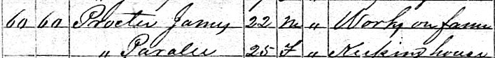 Delila Paralee Duffel and James Anderson Proctor 1870 census