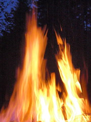 Mmmm. Fire good