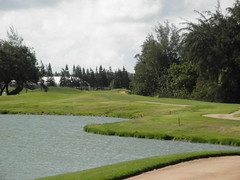 Turtle Bay Colf Course 297