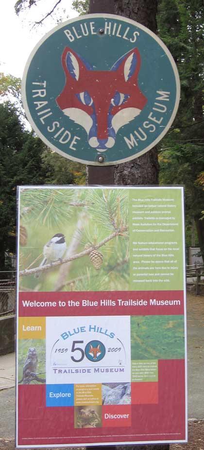 11.23.11 - Blue Hills Trailside Museum