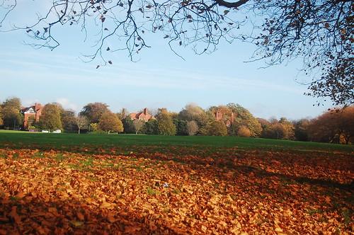 Sefton Park