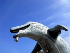 a weird dolphin haunts me (dmixo6) Tags: holiday spain playa andalucia dugg dmixo6