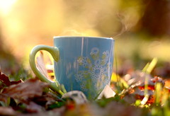 *Autumn Love* ( NoelleBuske ) Tags: blue autumn light sunlight cute love cup colors grass leaves sunshine happy nice nikon afternoon bright tea sweet bokeh coffeecup vibrant joy sunny steam mug coffecup applecinnamon nikond40