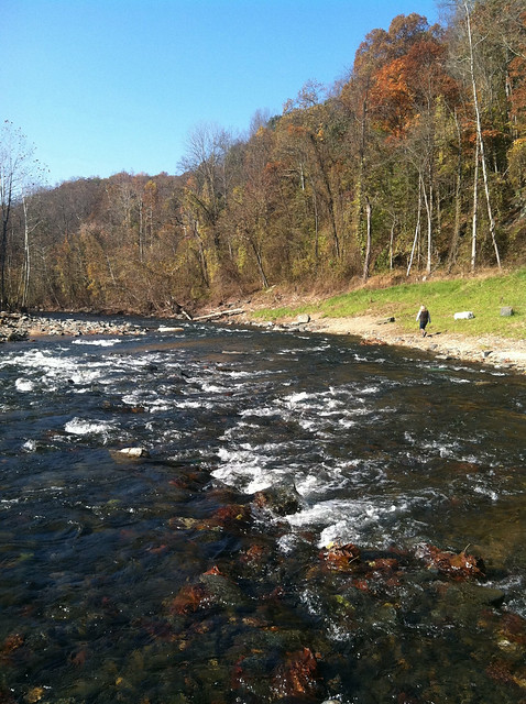 Patapsco River @ Hollofield