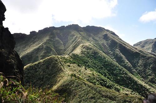 通往半平山的山徑