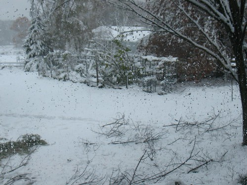 here it comes: Snowstorm of October 2011, New Jersey