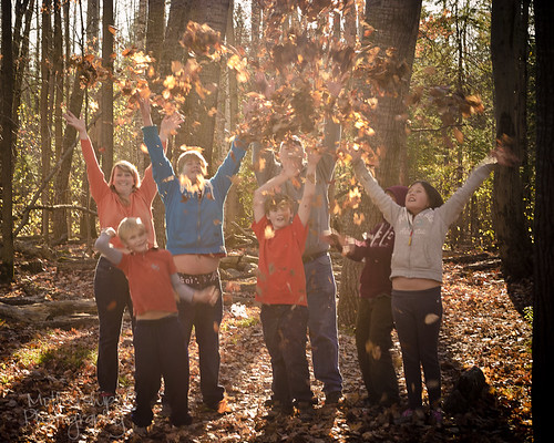 316:365 Leaf toss