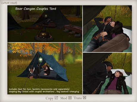 [what next] Bear Canyon Couples Tent & Lantern, 275 lindens by Cherokeeh Asteria