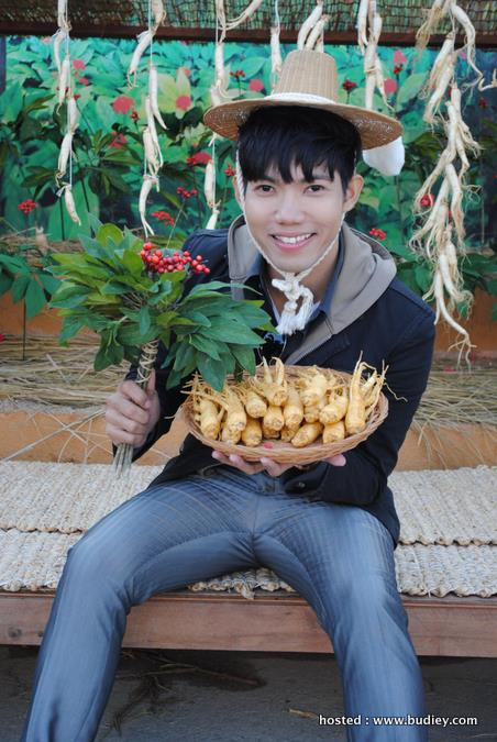 picture with harvested Ginseng & Tree at Geumsan World Ginseng Expo,Geumsan,Korea