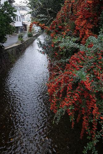 京都をめぐる冒険 三十三間堂