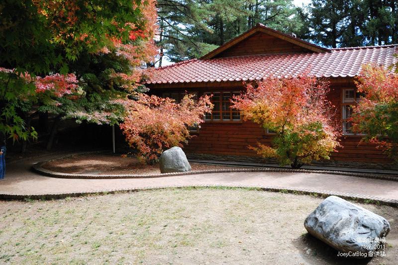 2011_1106福壽山農場DSC_3330