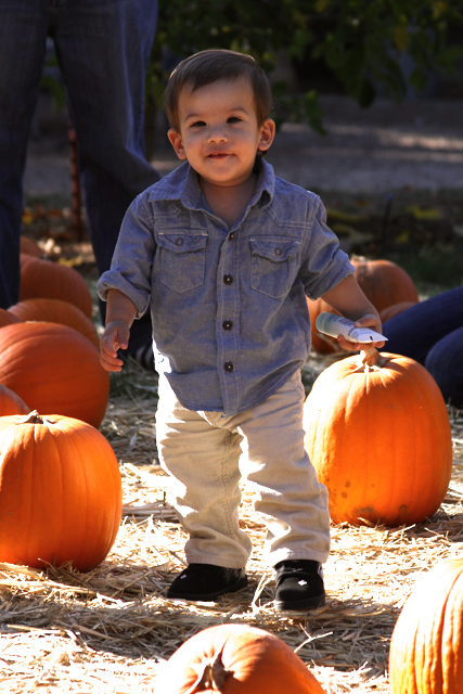 jc in pumpkin patch looking at camera