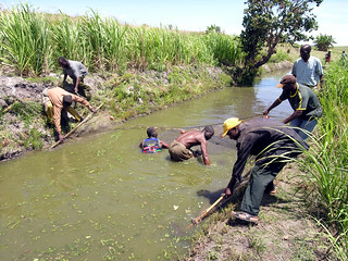 Aquaculture Fish pond in Ligowe Association, Ligowe, Tsangano District, Tete Province, Mozambique. Photo by Peter Fredenburg, 2008