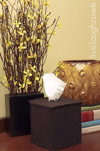 tissue box_guest room-1