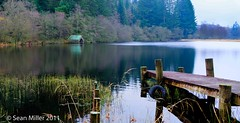 Loch Ard (tecseanmiller) Tags: reflection water beauty reeds scotland dock boathouse lochard