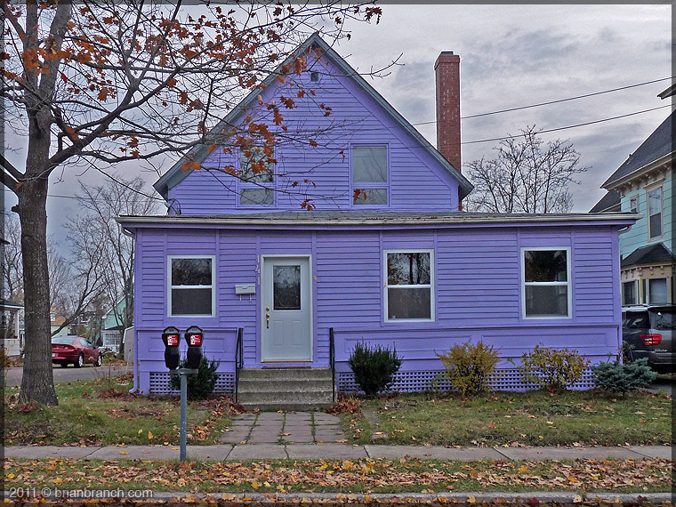 P1190830_purple_house