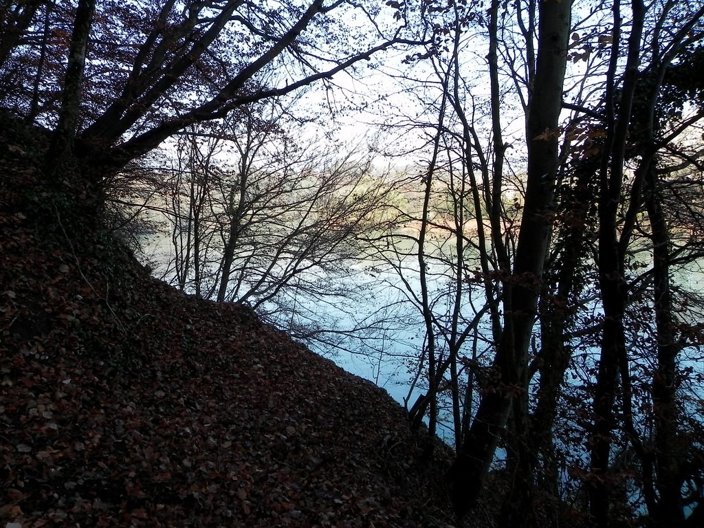 Walk along the Rhone