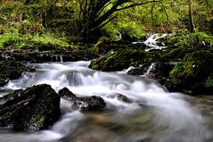 Río Cabra (enekotas) Tags: