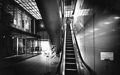 (skidu) Tags: people bw white black angle elevator wide hills roppongi 1116 550d tonika