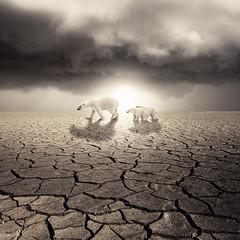 Calentamiento Global (LuisBeltrán) Tags: sol arte polar global tierra osos calentamiento sunbears idream bestcapturesaoi —obramaestra— truthandillusion