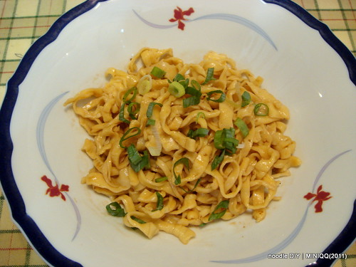 20110701  noodle DIY _11