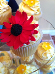 Wedding Very Vanilla Cupcakes (Life is Sweet NI (Sarah)) Tags: wedding red black flower yellow cake french blossom belfast pearls sugar cupcake daisy icing vanilla meringue frosting gerberdaisy fondant buttercream cupcaketower gumpaste gerberadaisy royalicing malonehouse flowerpaste decadencevintagebridalfair